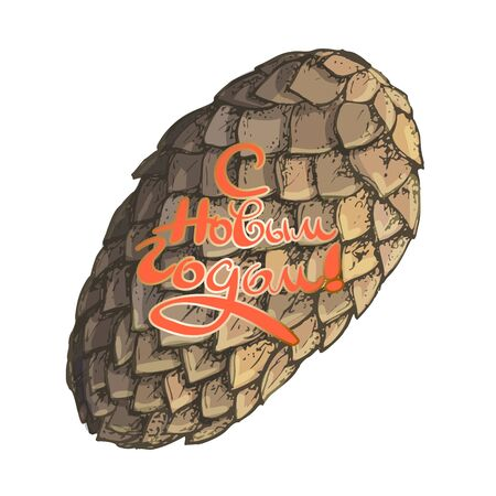Beautiful vector image of a fir cone with a New Years wish. Russian translation Happy New Year.