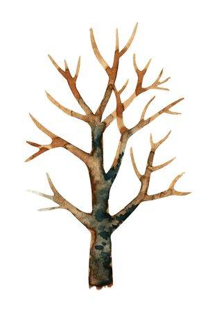 Watercolor illustration of a dark tree without leaves. Isolated on white background. Banco de Imagens