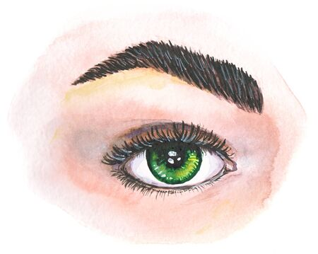 Watercolor drawing of a green eye with cilia and eyebrow Banco de Imagens