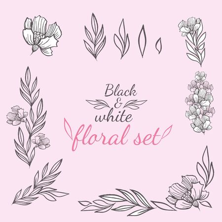 Vector floral set of several elements with leaves, inflorescences and stems on a pink background and with the inscription black and white floral set. Ilustração