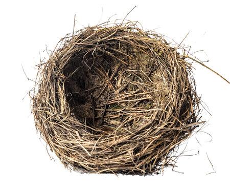 nest on a white background Фото со стока