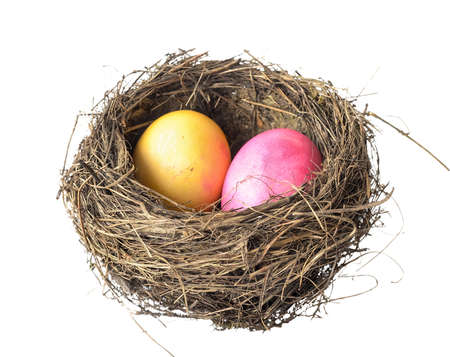 nest with decorated easter eggs on a white background