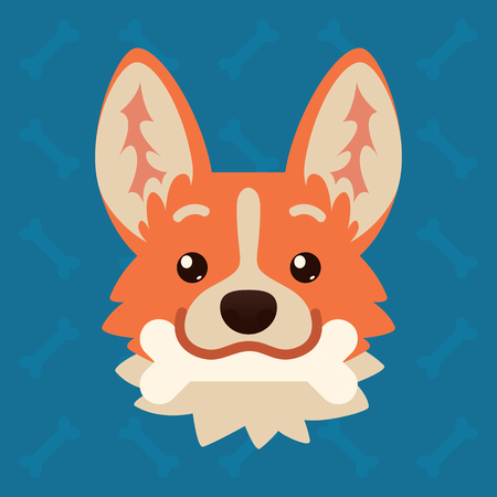 Corgi dog emotional head with bone in mouth. Vector illustration of cute dog in flat style shows playful emotion. Frisky emoji. Smiley icon. Chat, communication, sticker. Object on blue background.