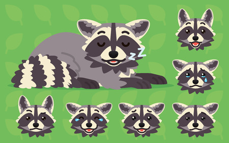 Cute raccoon sleeping. Vector illustration of sleepy coon and its head sows different emotions on green background. Emoji. Emoticon. Grey racoon with striped tail in flat cartoon style. Set Vectores