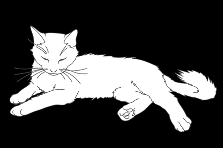 Cute realistic cat laying. Vector illustration of white kitty isolated on black background. Element for your design, print, sticker. White cat in simple sketch style. Lineart and silhouette.