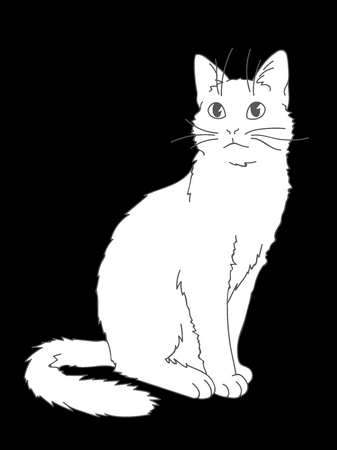 Cute realistic cat sitting. Vector illustration of kitty looking up. Grey lines, white figure on black background. Element for your design, print, sticker. Fluffy white cat in simple sketch style. Line art with fill.