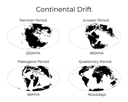 Monochrome vector illustration silhouettes of Worldmap at Permian, Jurassic, Paleogen and Quartenary periods isolated on background. Continental drift and changes of Earth map