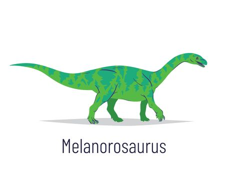 Melanorosaurus. Sauropodomorpha dinosaur. Colorful vector illustration of prehistoric creature melanorosaurus in hand drawn flat style isolated on white background. Huge fossil dinosaur.