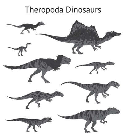 Set of theropoda dinosaurs. Monochrome vector illustration of dinosaurs isolated on white background. Side view. Theropods. Proportional dimensions. Element for your desing, blog, journal.