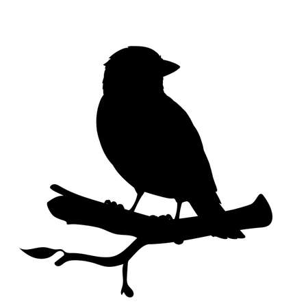 Realistic sparrow sitting on a branch. Monochrome vector illustration of black silhouette of little bird sparrow isolated on white background. Stencil. Element for your design, print, decoration.