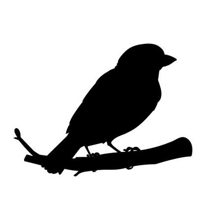Realistic sparrow sitting on a branch. Stencil. Monochrome vector illustration of black silhouette of little bird sparrow isolated on white background. Element for your design, print, decoration. Çizim