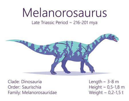 Melanorosaurus. Sauropodomorpha dinosaur. Colorful vector illustration of prehistoric creature melanorosaurus, description of characteristics, period of life isolated on white background. Fossil dino.