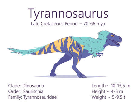 Tyrannosaurus. Theropoda dinosaur. Colorful vector illustration of prehistoric creature tyrannosaurus and description of characteristics and period of life isolated on white background. Fossil. T-Rex. Çizim