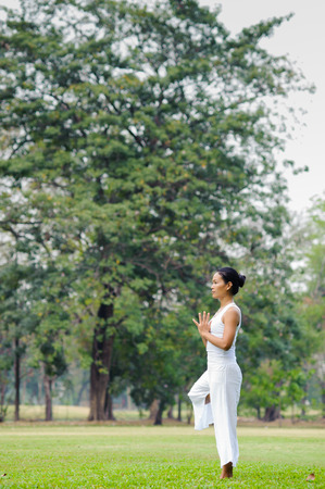 vriksasana: Beautiful woman practicing yoga in the park,Tree Posture,Vriksasana Stock Photo