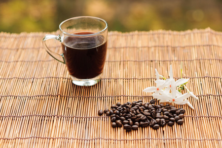 garden bean: Coffee in glass trasparent cup and bean and white flower on grass mat in garden
