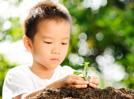 Child holding young plant in hands on green background to plant on soil. Concept Earth day photo