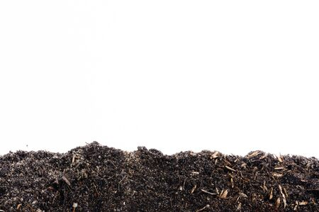 black soil: The Black soil and dry leaf isolated on white Stock Photo