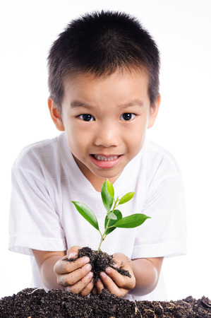 Boy holding young plant in hands on white background to plant on soil.