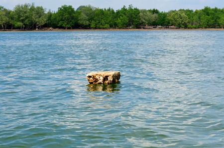polystyrene: Polystyrene float on the sea polution