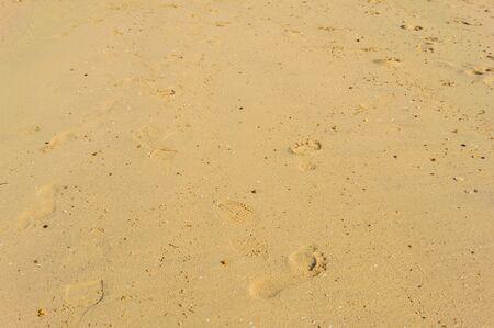 foot step: