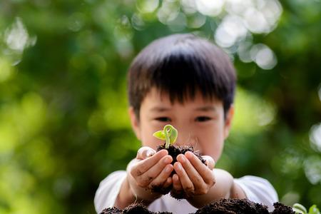 薄いフォーカスの一方で、土壌に植える子緑の背景の手で若い実生植物を保持します。コンセプト地球の日