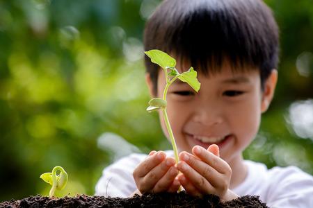 crecimiento planta: Enfoque fino en la mano, Ni�o que sostiene la pl�ntula pl�ntula en las manos sobre fondo verde de la planta en suelo. D�a concepto de la tierra