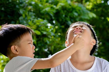 アジアの若い男の子は、ツリーの葉から緑ボケ背景の前に彼の兄弟によってヒットしました。