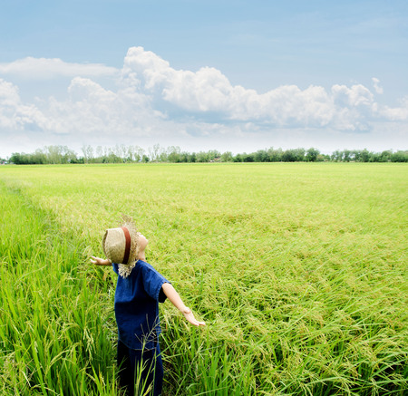 children learning: Young Asian boy in thai traditional blue shirt and straw hat feeling relax on the rice field be fore harvesting. Stock Photo