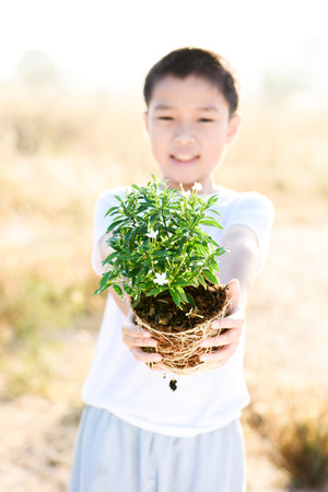 Thin focus on hand, Child holding young seedling plant in hands on dry land to plant on soil. Concept Earth day