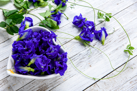 butterfly bow: Butterfly pea flower in heart shape bow on grunge wood table Stock Photo