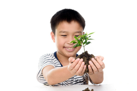 conservation: Selective focus on young hand holding the little plant seedling from the black soil and out focus boy face. Concept earth day. Stock Photo