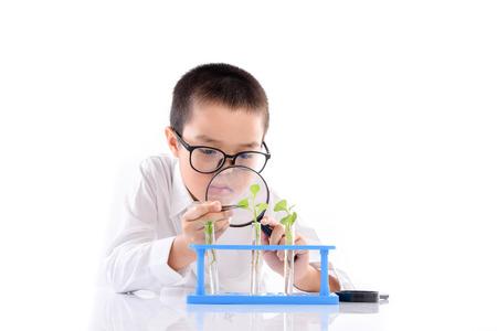 白い背景の彼の実験のためガラス管のアジアの若い男の子チェック幼苗工場
