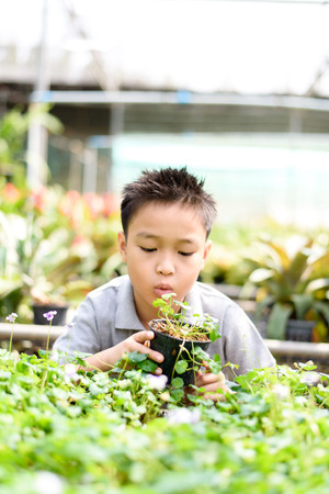 Selective focus, young Asian boy hand holding young plant in hands on in the garden shop. Concept Earth day Stock Photo