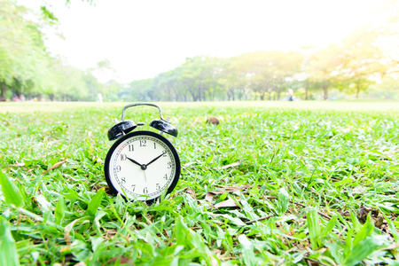 Classical black alarm clock on green lawn in the park in day time. Stock Photo