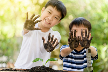 the requirement: Selective focus at hand of two young Thai boy that dirty from soil after plant little seedling on black soil. Earth day and family concept