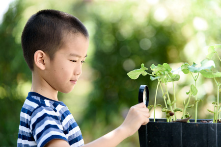 Selective focus at young asian Thai boy interesting in young plant seedling growing from soil and look by magnify glass in the garden. Earth day concept and global warming. Stock Photo