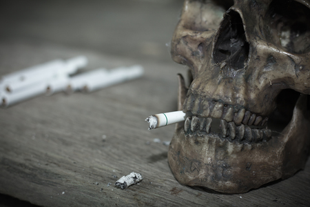 Human skull smoking a cigarette,Dead because of smoking,Stop Smoking Concept. Stock Photo