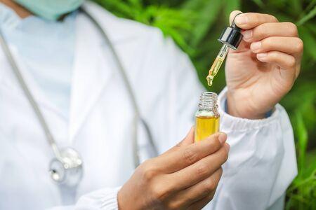 Hemp oil., Hand holding bottle of Cannabis oil against Marijuana plant, CBD oil pipette.