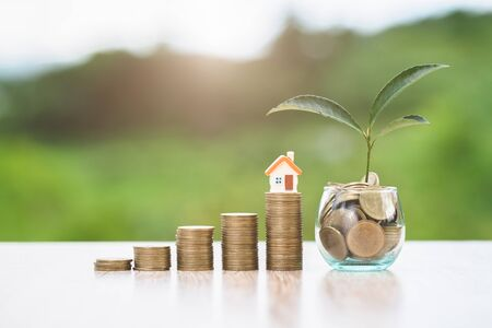 House placed on coins. The tree grows on coins.  planning savings money of coins to buy a home concept for property, mortgage and real estate investment. Stock Photo