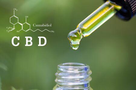 Hemp oil, CBD chemical formula, Cannabis oil in pipette, Medical herb concept