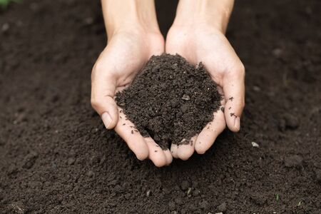 Top view. Farmer holding soil in hands. The researchers check the quality of the soil. Agriculture, gardening or ecology concept layout, copy space.