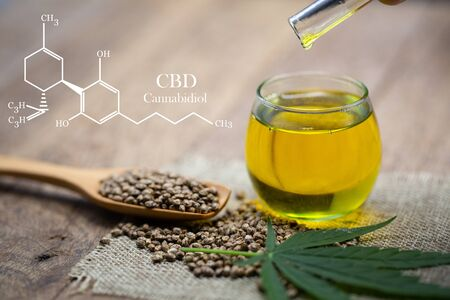 CBD elements in Cannabis,  CBD oil cannabis extract, researching hemp oil extracts for medical purposes. Reklamní fotografie