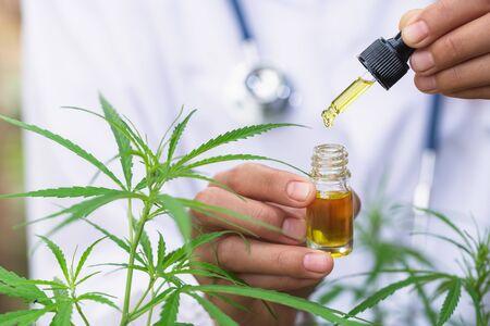 CBD hemp oil, Hand holding bottle of Cannabis oil against Marijuana plant. Herbal Treatment, Alternative Medicine