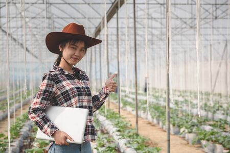 Asian woman farmer using tablet and notebook for research and check the quality of the melon tree in the  greenhouse. Фото со стока