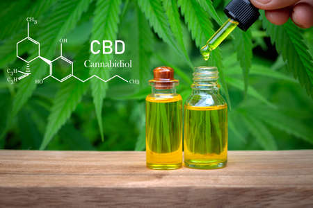 CBD Chemical Formula, droplet dosing a biological and ecological hemp plant herbal pharmaceutical cbd oil from a jar on a green marijuana leaf background.  medical cannabis concept.