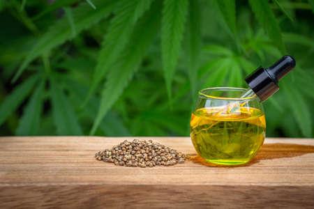 CBD Hemp oil, marijuana plant and cannabis oil on wooden table, medical marijuana oil concept