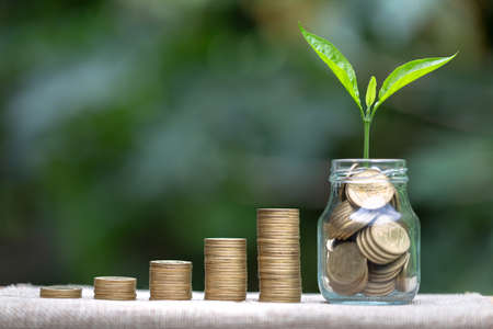 step of coins stacks with tree growing on top, money, saving and investment or Future financial planning, concept for business, innovation, growth and money . 版權商用圖片 - 151581348
