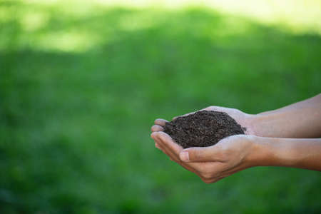 Soil in hand on green farmland background.
