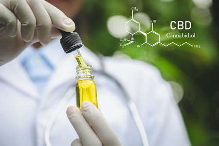 CBD elements in Cannabis,  CBD oil cannabis extract, researching hemp oil extracts for medical purposes. 免版税图像