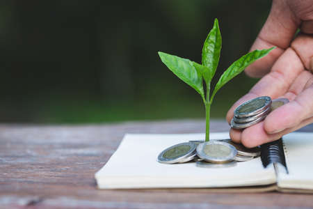 Hand giving a coin to a tree growing from pile of coins.Financial accounting, Investment Concept. Standard-Bild